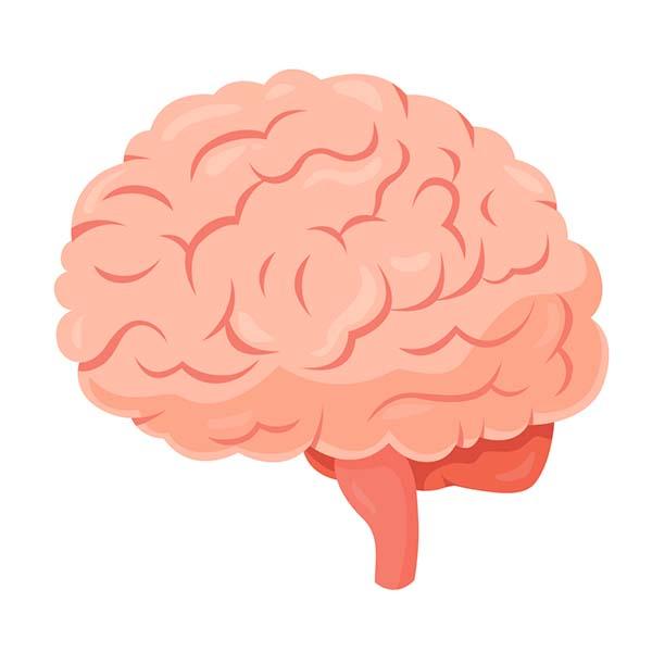 癫痫有什么常见的危害?
